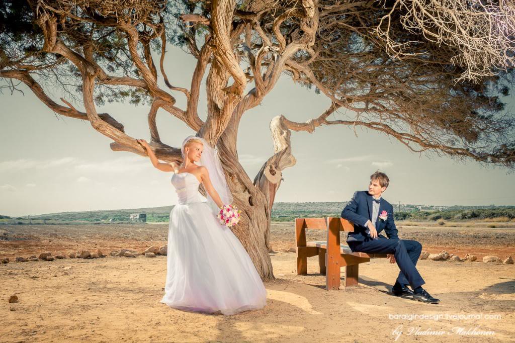 photo 2012-08-02_wedding_Elena_Andrey-0377.jpg