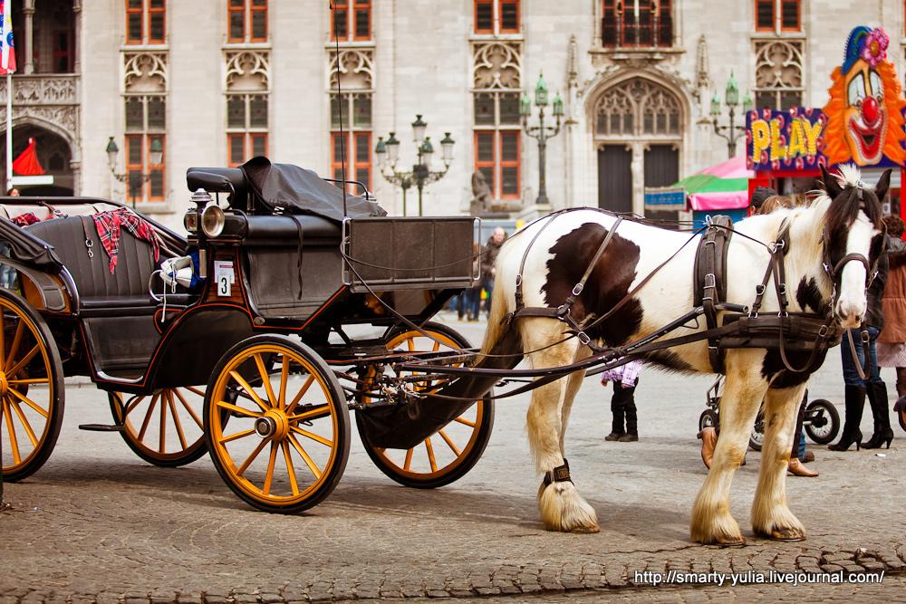 photo 2013_04_10_Brugge-13.jpg