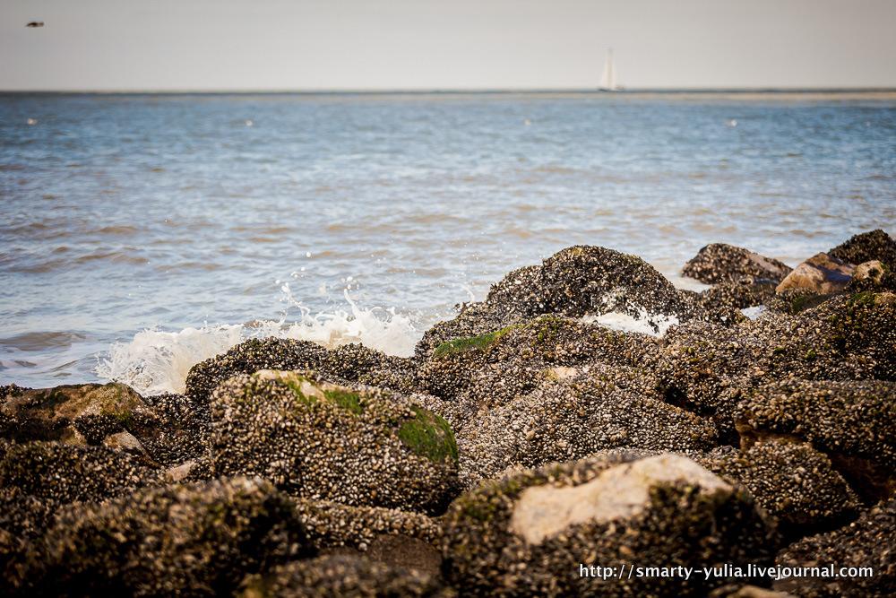 photo 2013_04_13_Oostende_Veves_Anne-0016.jpg